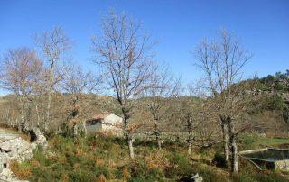 alvao cascatas vila real fisgas ermelo- ibeira pena caminhando-43