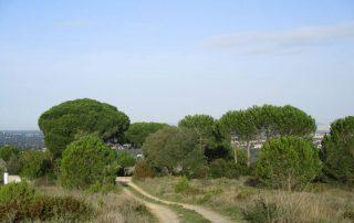vila nogueira azeitao moinho cuco arrabida caminhando-11