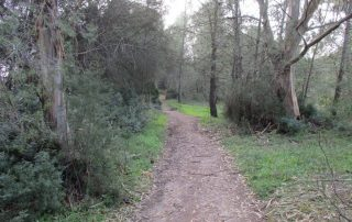 vila nogueira azeitao moinho cuco arrabida caminhando-31