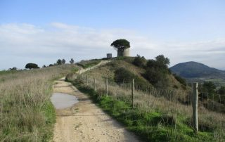 vila nogueira azeitao moinho cuco arrabida caminhando-5