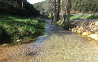 caminhada salinas rio maior tasquinhas caminhando-15