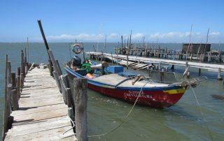 caminhada carrasqueira cais palafitico comporta estuario do sado caminhando-18