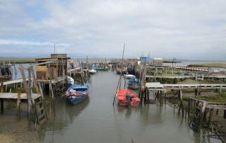 caminhada carrasqueira cais palafitico comporta estuario do sado caminhando-8