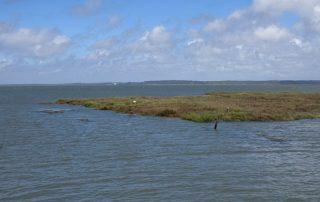 caminhada carrasqueira cais palafitico comporta estuario do sado caminhando-3