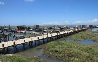 caminhada carrasqueira cais palafitico comporta estuario do sado caminhando-26