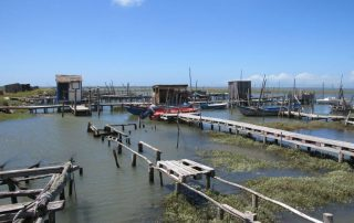 caminhada carrasqueira cais palafitico comporta estuario do sado caminhando-24