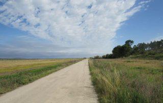 caminhada carrasqueira cais palafitico comporta estuario do sado caminhando-23