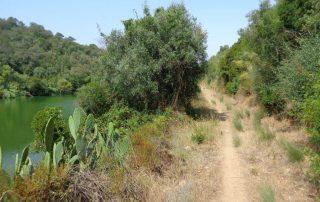 caminhada acude do gameiro parque ecologico do gameiro mora fluviario cabecao caminhando-13