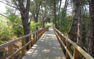 caminhada acude do gameiro parque ecologico do gameiro mora fluviario cabecao caminhando-24