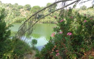 caminhada acude do gameiro parque ecologico do gameiro mora fluviario cabecao caminhando-4