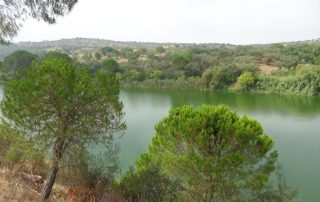 caminhada acude do gameiro parque ecologico do gameiro mora fluviario cabecao caminhando-18
