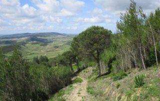 caminhada serra de montejunto caminhando-12