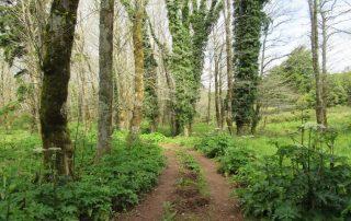 caminhada serra de montejunto caminhando-10