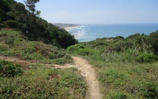 caminhada praia areia branca trilho costeiro caminhando