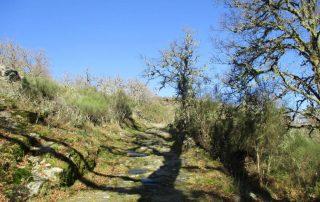 caminhada pitoes das junias geres caminhando