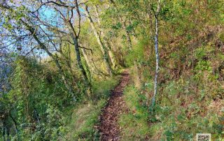 caminhada vale do lapedo caminhando