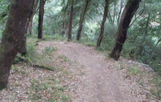 caminhada fragas d casal de sao simao  aldeia xisto caminhando