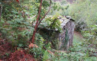 caminhada-oliveira-de-frades-cascatas-caminhando-29