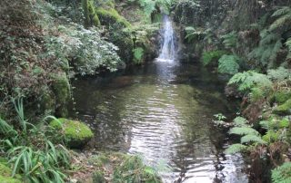caminhada-oliveira-de-frades-cascatas-caminhando-19