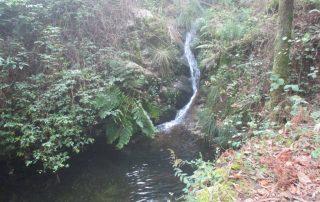caminhada-oliveira-de-frades-cascatas-caminhando-11
