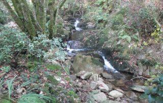 caminhada-oliveira-de-frades-cascatas-caminhando-5