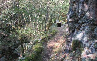 caminhada-oliveira-de-frades-cascatas-caminhando-4