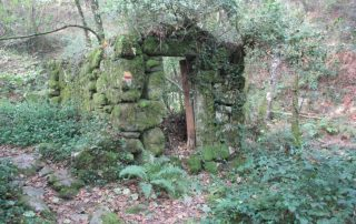 caminhada-oliveira-de-frades-cascatas-caminhando-3