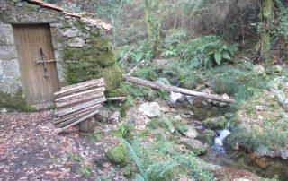 caminhada-oliveira-de-frades-cascatas-caminhando-1