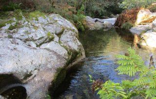 caminhada-oliveira-de-frades-cascatas-caminhando-13