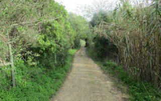 caminhada aldeias arrabida irmaos oleiros azeitao caminhando