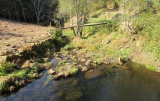 caminhada oliveira de frades serra do caramulo caminhando