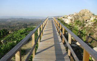 caminhada campia oliveira de frades