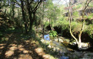 caminhada rio vouga oliveira de frades varzielas caminhando
