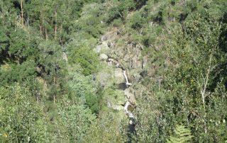 caminhada rio vouga oliveira de frades caminhando