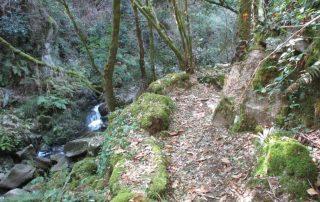 caminhada rio vouga oliveira de frades  ribeira varzielas caminhando