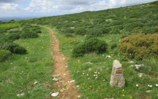 caminhada serra de montejunto caminhando