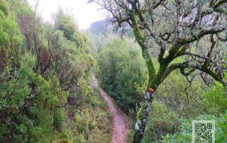 caminhada vale dos poios redinha serra do sico pombal caminhando