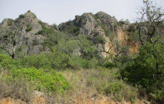 caminhada ria formosa olhao rocha da pena caminhando