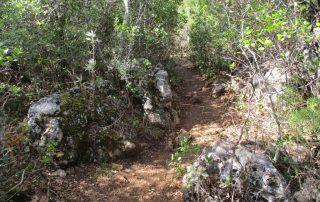 caminhada ria formosa olhao rocha da pena caminhandocaminhada ria formosa olhao caminhando