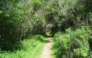 caminhada serra do socorro archeira caminhando