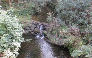 caminhada trilho dos 3 rios albergaria-a-velha pateira de fermentelos caminhando