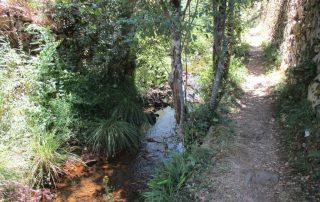 caminhada georota do orvalho passadiços oleiros caminhando