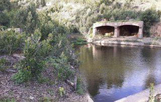 caminhada serra de sintra pisao rio da mula penedo alvante caminhando